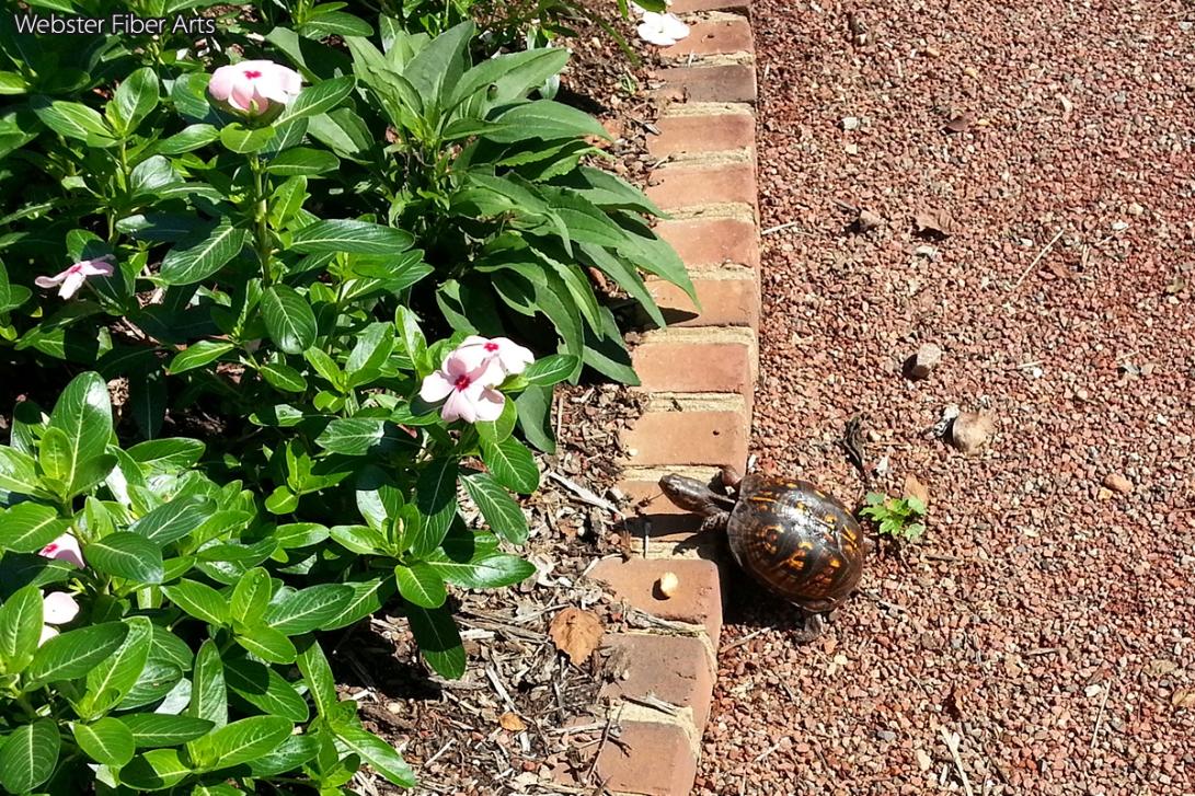 Riverbanks Garden Turtle   Webster Fiber Arts