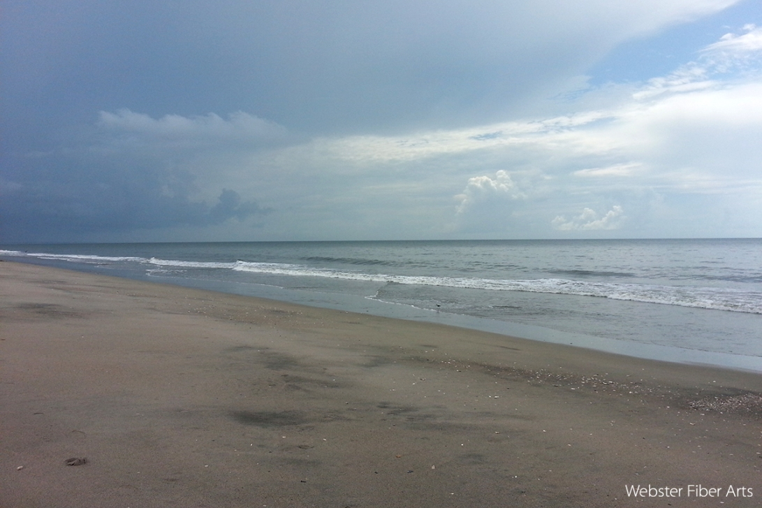 Edisto Beach State Park | Webster Fiber Arts