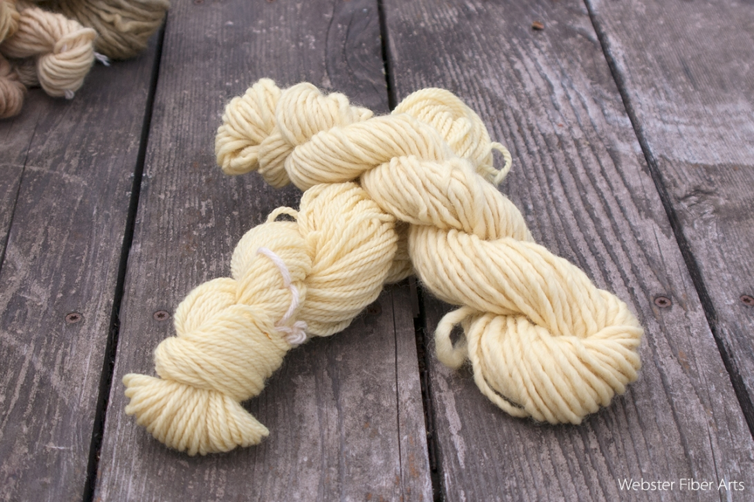 Daffodil Dyed Yarns | Webster Fiber Arts