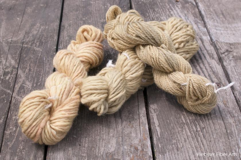 Dandelion Dyed Yarns | Webster Fiber Arts