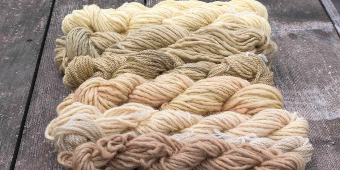 Eco Dyed Yarns | Webster Fiber Arts