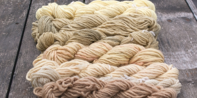 Eco Dyed Yarns | Webster Fiber Arts